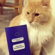 Wally and his passport