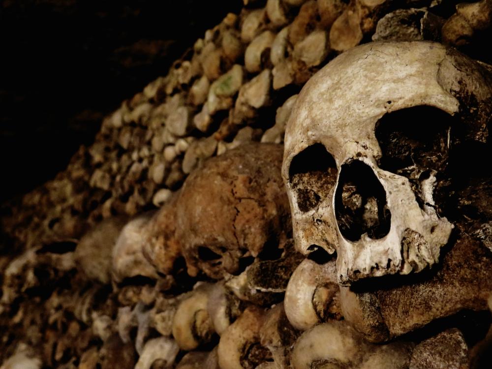 Calacombs